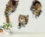 3D CUTE CAT WALL TOILET STICKER DECORATIONS