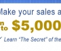Attention Sales Professionals