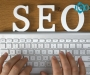 Best SEO Services in Auckland