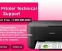 Epson Printer Help Desk Number USA