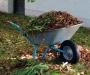 Garden Waste Removal Auckland