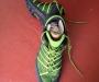 Inov 8 trail shoes